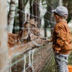 関東周辺で誕生日特典がある動物園まとめ【2021年版】